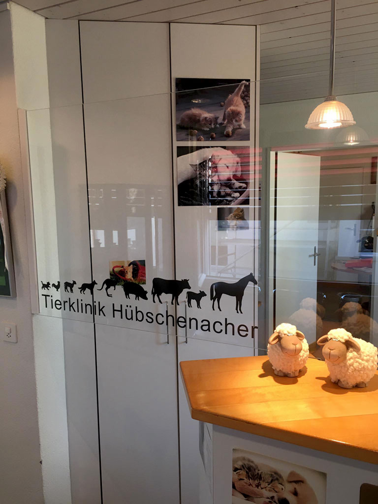 Tierklinik Hübschenacher, Rapperswil - Kuschi Corona Schutzmassnahmen
